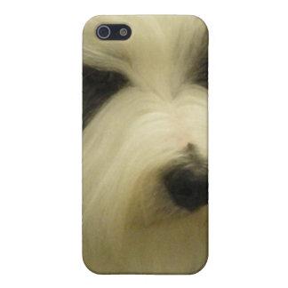 Viejo caso inglés del iPhone 4 del perro pastor iPhone 5 Cobertura