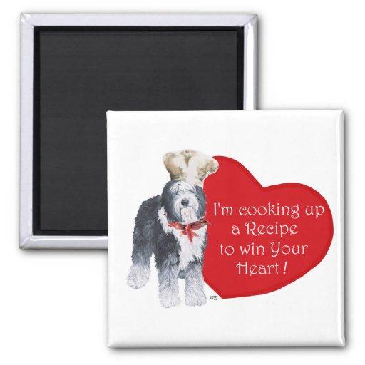Viejo cocinero inglés del perro pastor del amor imán cuadrado