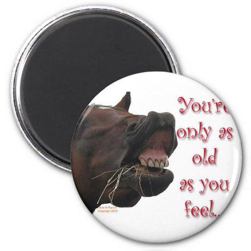 Viejo como usted sienta el caballo divertido iman para frigorífico