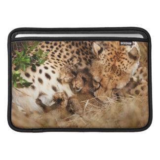Viejo de un día de la preparación del guepardo funda macbook air
