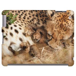 Viejo de un día de la preparación del guepardo funda para iPad