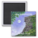 VIEJO HOMBRE del imán 2 del arte de New Hampshire
