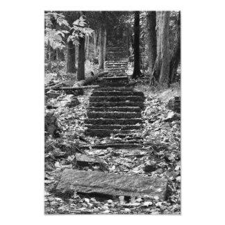 Viejos pasos de piedra impresion fotografica