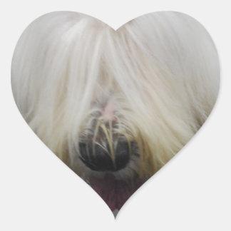 Viejos pegatinas ingleses lindos del perro pastor pegatina en forma de corazón