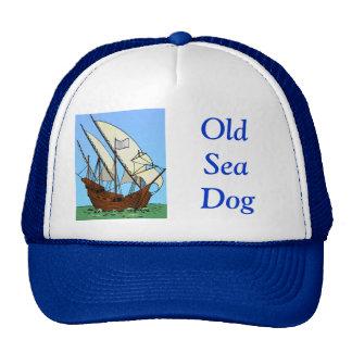 Viejos perro y pirata de mar gorras de camionero