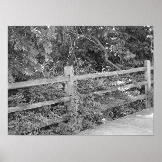 Viejos postes de la cerca posters