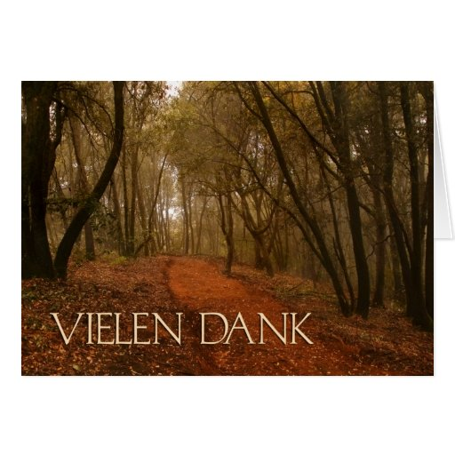 Vielen Dank German Thank You Path in the Woods Cards