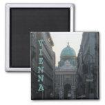 Viena, Austria Imán De Frigorífico