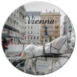 Viena Austria Platos De Cerámica