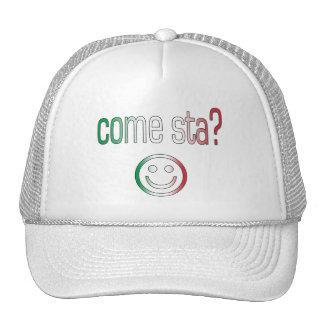 ¿Viene Sta? Colores de la bandera de Italia Gorras De Camionero