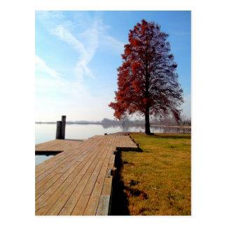 Vienna Maryland Waterfront-Nanticoke River Postcard