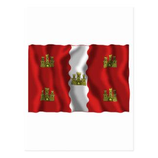 Vienne waving flag postcard