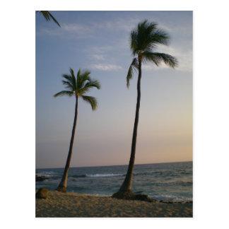 Vientos comerciales de la puesta del sol hawaiana postales