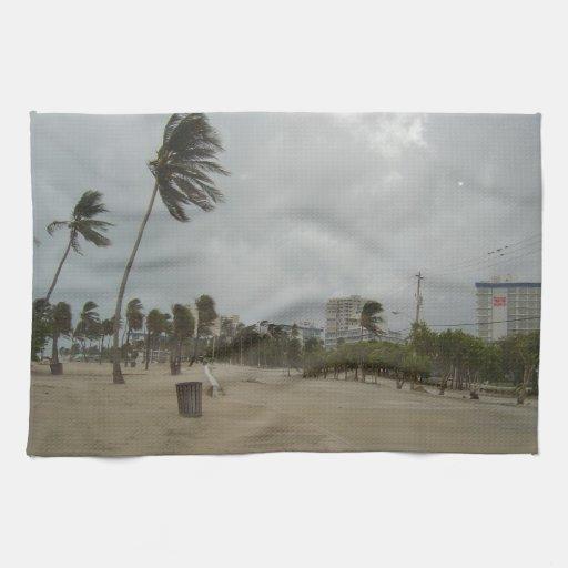 Vientos de la playa del pie Lauderdale fuertes Toalla