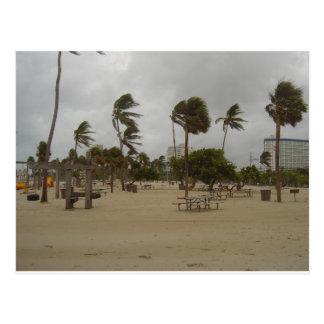 Vientos de la playa del pie Lauderdale fuertes Postal