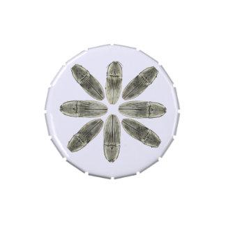 Vientre de la jalea con los escarabajos de tecleo frascos de dulces