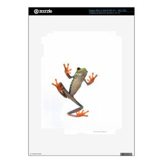 Vientre de las ranas pegatinas skins para iPad 3