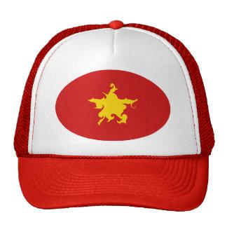 Vietnam Gnarly Flag Hat