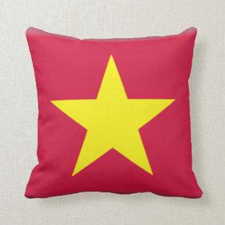Vietnam Pillow
