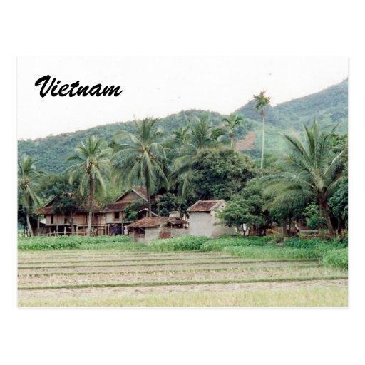 Pošalji mi razglednicu, neću SMS, po azbuci - Page 6 Vietnam_rice_paddies_postcards-r251383e718334551a566e12d8d0d8613_vgbaq_8byvr_512