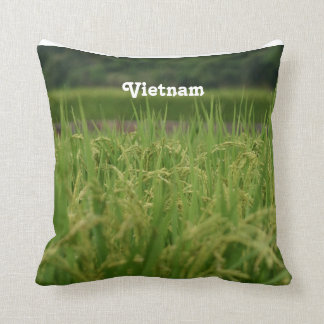 Vietnam Rice Paddy Pillows