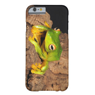 Vietnamese Black-Webbed Gliding Frog Barely There iPhone 6 Case