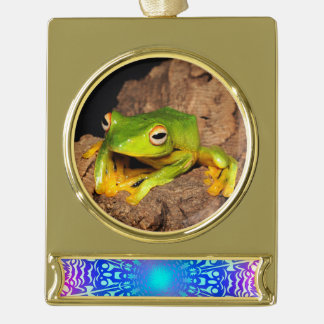 Vietnamese Black-Webbed Gliding Frog Gold Plated Banner Ornament