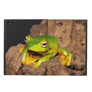 Vietnamese Black-Webbed Gliding Frog iPad Air Cases