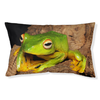Vietnamese Black-Webbed Gliding Frog Pet Bed