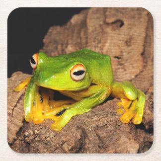 Vietnamese Black-Webbed Gliding Frog Square Paper Coaster