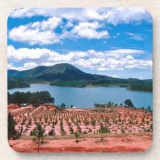 Vietnamese Forest Lake Coaster