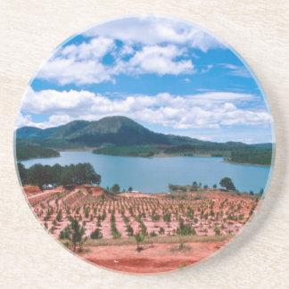 Vietnamese Forest Lake Sandstone Coaster