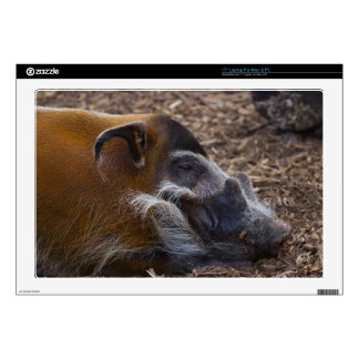 "Vietnamese Hog Decals For 17"" Laptops"