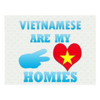 Vietnameses es mi Homies Tarjeta Postal