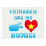 Vietnameses es mi Homies Tarjetas Postales