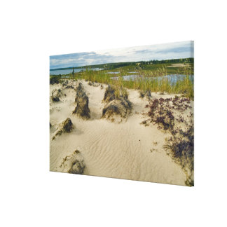 View from a sandy hilltop of lakes and hills on canvas print