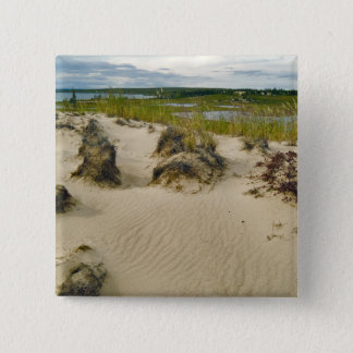 View from a sandy hilltop of lakes and hills on pinback button