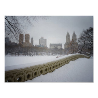 View From Bow Bridge, Central Park, NYC, Medium Posters