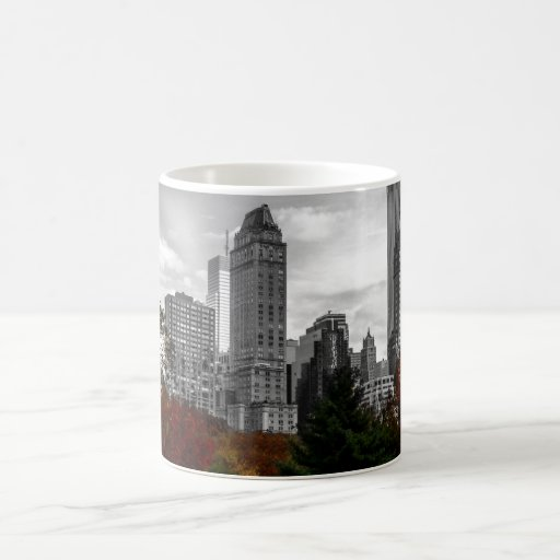 View from Central Park in New York City Mugs