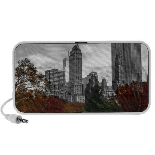 View from Central Park in New York City Travelling Speaker