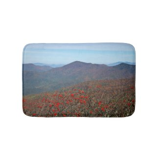 View from Craggy Dome Mountain