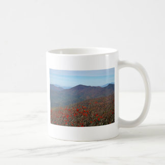 View from Craggy Dome Mountain Coffee Mug