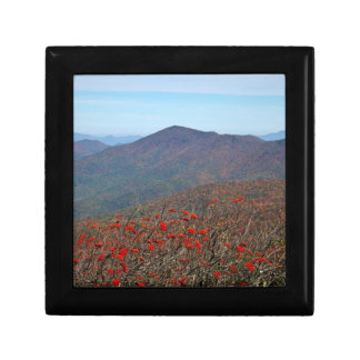 View from Craggy Dome Mountain Keepsake Boxes