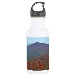 View from Craggy Dome Mountain Stainless Steel Water Bottle