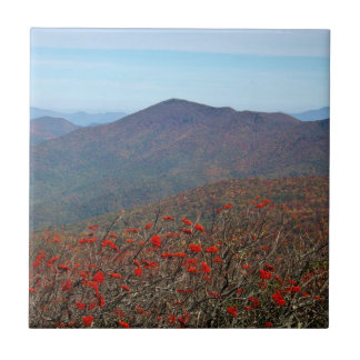 View from Craggy Dome Mountain Tiles