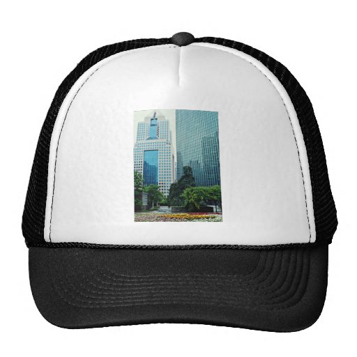 View from Equitable Plaza, Pittsburgh, Pennsylvani Hat