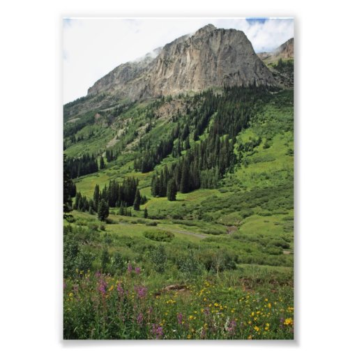 View from Gothic Trails, Colorado Art Photo