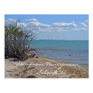 View from Honeymoon Island Postcard