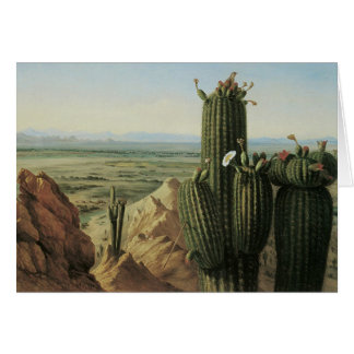 View from Maricopa Mountain Near Rio Gila by Pratt Card