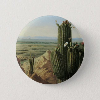 View from Maricopa Mountain Near Rio Gila by Pratt Pinback Button